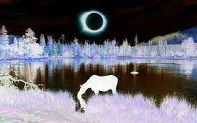 Popolni Sončev mrk v ZDA - 21. avg. 2017 (USA - Total Solar Eclipse)
